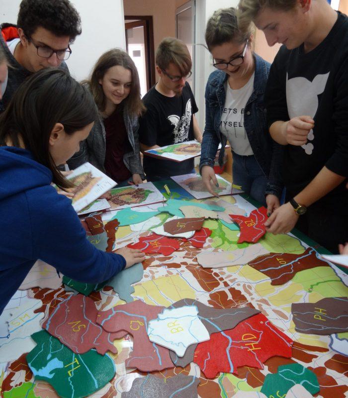 Proiect comun cu elevii de liceu